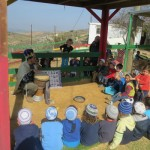 פעילות וקריאה בחצר דרך האבות